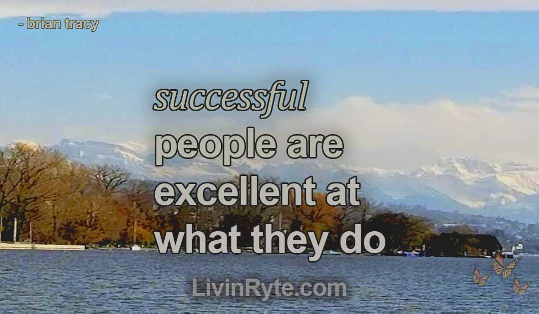 People Who are Successful are Excellent at What They Do
